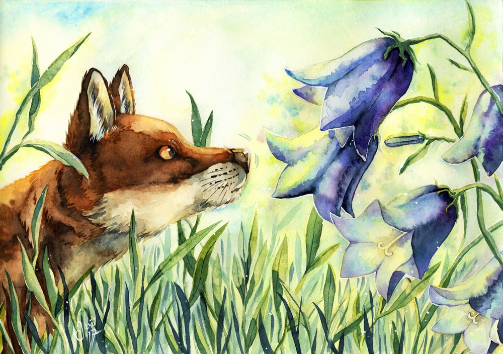 Original Painting - Fox and Bluebells